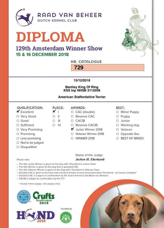 Amsterdam Winner 2018 Bentley King of Rings diploma